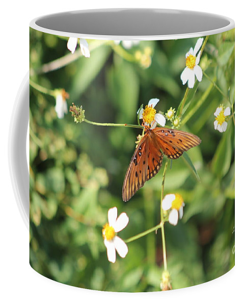 Butterfly Coffee Mug featuring the photograph Butterfly 48 by Michelle Powell