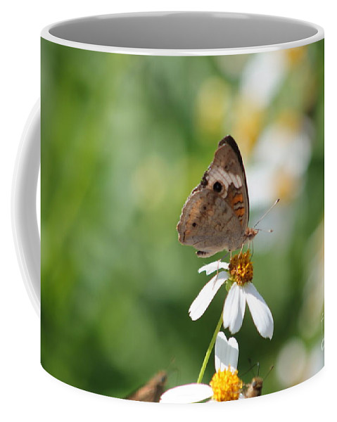 Butterfly Coffee Mug featuring the photograph Butterfly 5 by Michelle Powell