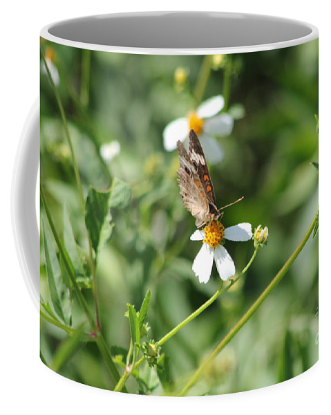 Butterfly Coffee Mug featuring the photograph Butterfly 7 by Michelle Powell