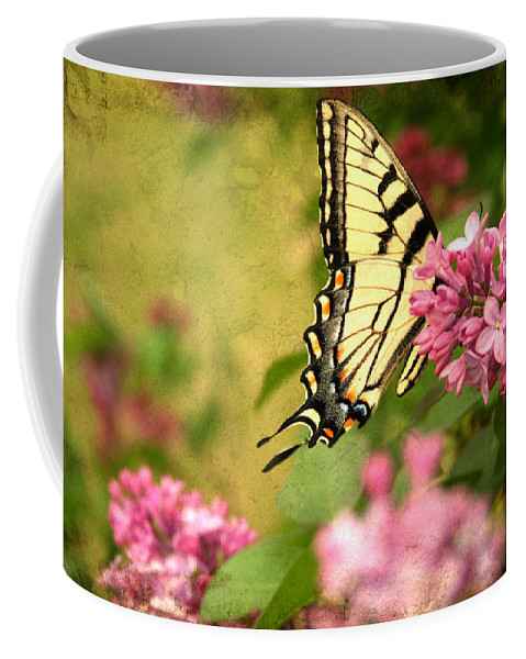 Butterfly Coffee Mug featuring the photograph Butterfly by Darren Fisher
