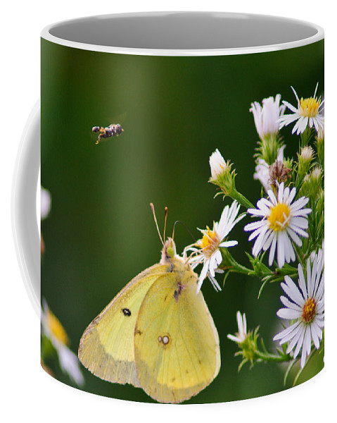 Bee Coffee Mug featuring the photograph Buzzed Butterfly by Craig Leaper