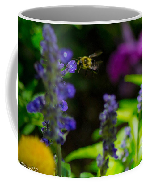 Bumble Bee Coffee Mug featuring the photograph Buzzing Around by Shannon Harrington