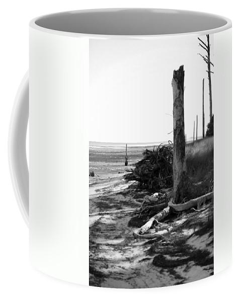 Trees Coffee Mug featuring the photograph Bwhurricane Damage by Judy Hall-Folde
