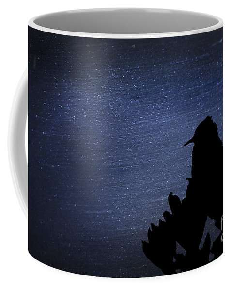 Fine Art Coffee Mug featuring the photograph Cactus Wren In The Night by Donna Greene