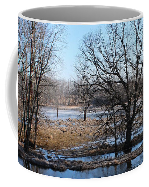 Canada Geese Coffee Mug featuring the photograph Canadian Geese Take Flight by Sherry Oliver