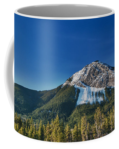 Alberta Coffee Mug featuring the photograph Canadian Rockies 12740 by Guy Whiteley