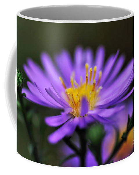 Photography Coffee Mug featuring the photograph Candles On A Daisy by Kaye Menner