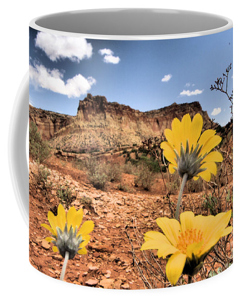 Capitol Reef National Park Coffee Mug featuring the photograph Capitol Flowers by Adam Jewell
