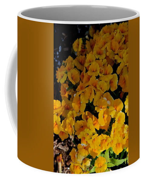 Florida Coffee Mug featuring the photograph Cascade by Joseph Yarbrough