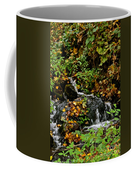 Landscape Coffee Mug featuring the photograph Casual Creek by Susan Herber