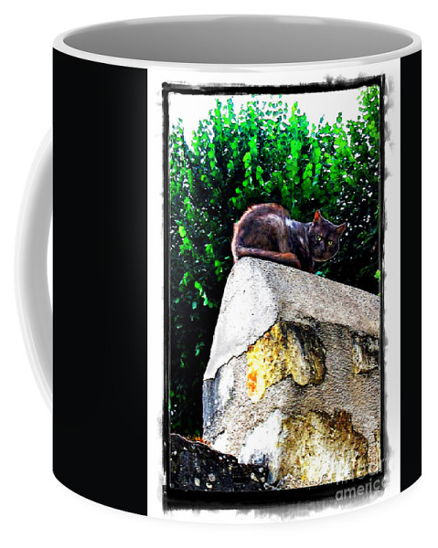 Cat Coffee Mug featuring the photograph Cat On Medieval Wall by Joan Minchak