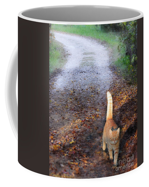 Cat Coffee Mug featuring the photograph Cat On The Road Again by Constance Woods