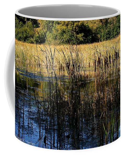 Outdoors Coffee Mug featuring the photograph Cattail Duck Cover by Susan Herber