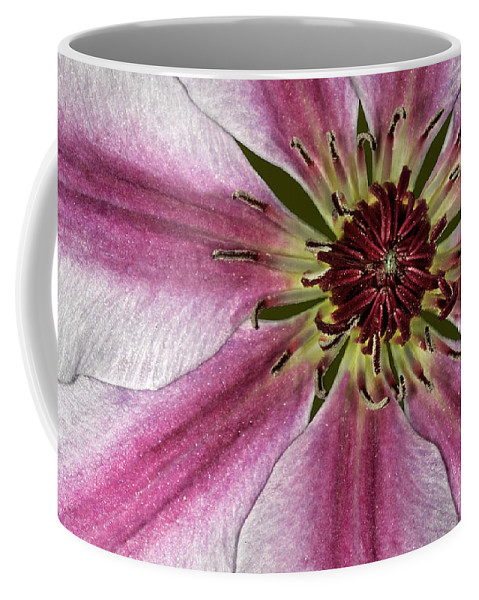 Flower Coffee Mug featuring the photograph Center Of It All by Susan Candelario