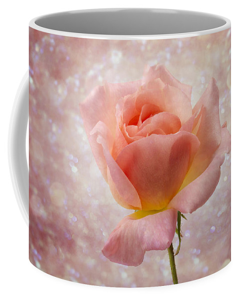 Clare Bambers Coffee Mug featuring the photograph Champagne Rose. by Clare Bambers
