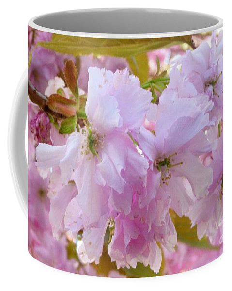 Blossom Coffee Mug featuring the photograph Cherry Blossom by Lynn Bolt