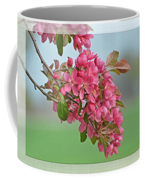 Nature Coffee Mug featuring the photograph Cherry Blossom Spring Photoart by Debbie Portwood