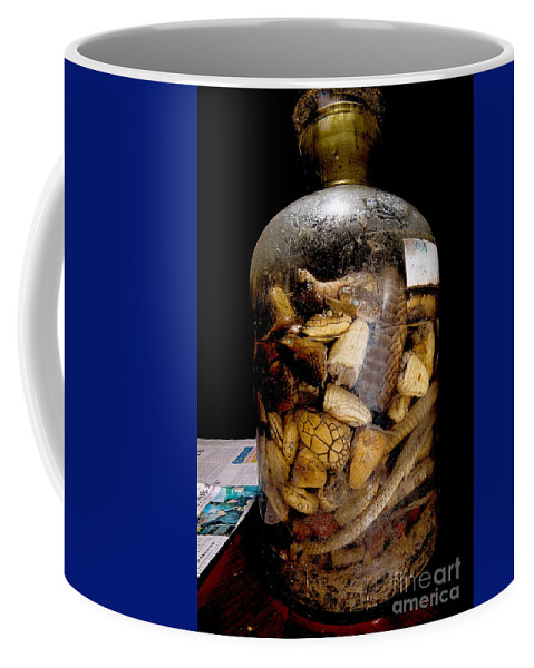 Snake Wine Coffee Mug featuring the photograph Chinese Snake Wine by Dant� Fenolio