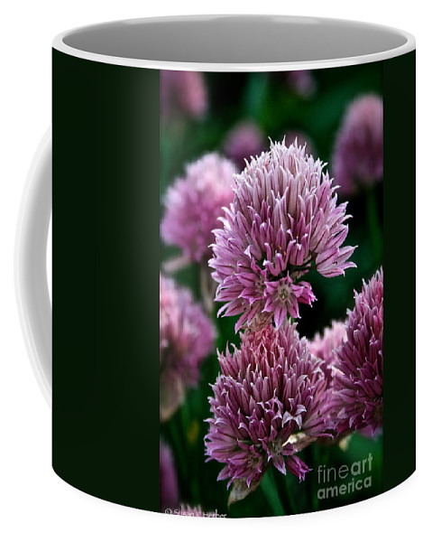 Plant Coffee Mug featuring the photograph Chive Blossom by Susan Herber