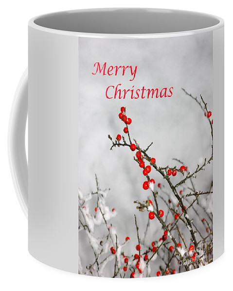 Christmas Coffee Mug featuring the photograph Christmas Berries by John Chatterley