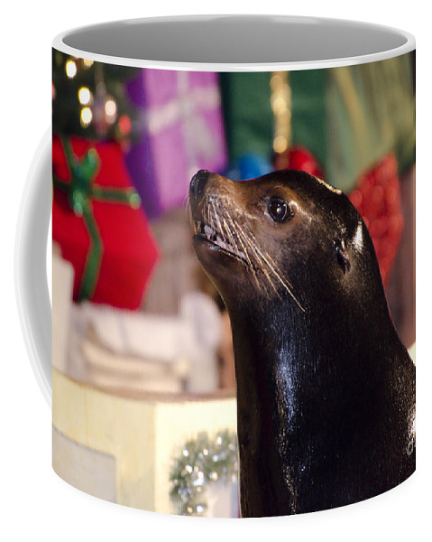 Sea Lion Coffee Mug featuring the photograph Christmas Sea Lion by Jim And Emily Bush