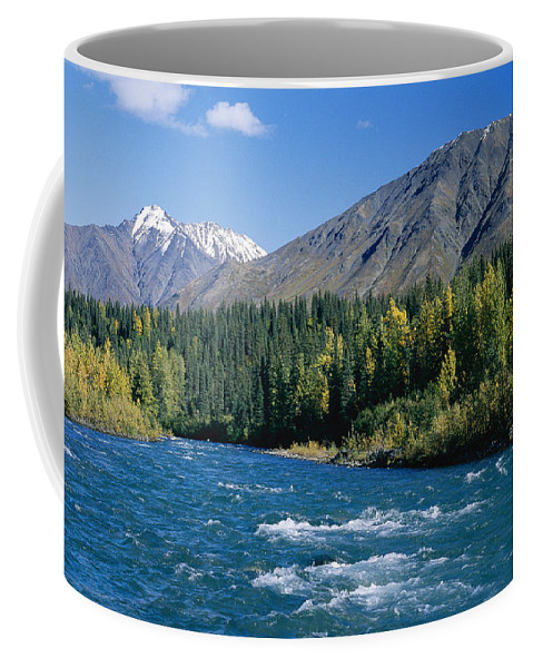 North America Coffee Mug featuring the photograph Clear Flowing Honolulu Creek And Fall by Rich Reid