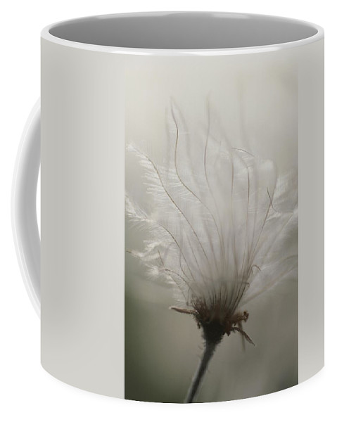 Plants Coffee Mug featuring the photograph Close View Of A Feathery Seed Pod by Michael Melford