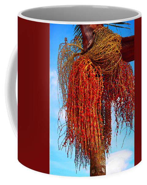 Coiffure Coffee Mug featuring the photograph Coiffure by Skip Hunt