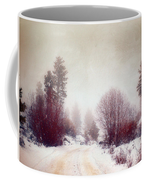 Road Coffee Mug featuring the photograph Cold Road by Tara Turner