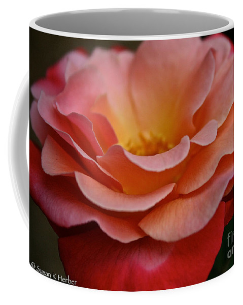 Plant Coffee Mug featuring the photograph Colorific by Susan Herber