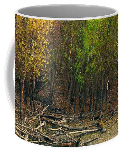 Trees Coffee Mug featuring the photograph Columbia Bottoms Slough by Greg Matchick