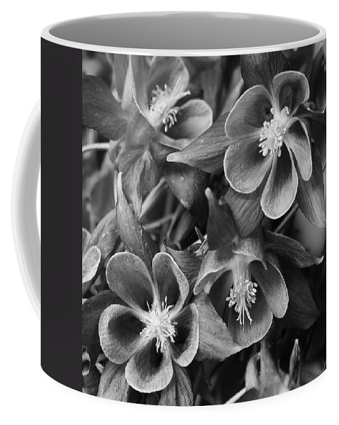 Flora Coffee Mug featuring the photograph Columbine In Black And White by Bruce Bley