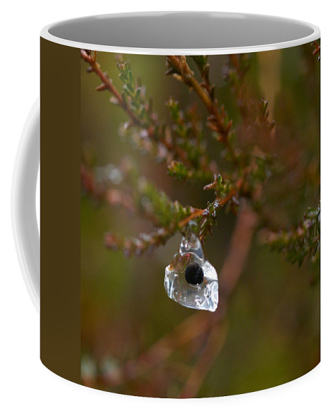 Lehtokukka Coffee Mug featuring the photograph Common Frog Wrong Place by Jouko Lehto