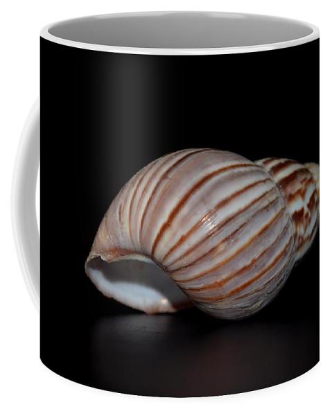 Copper Coffee Mug featuring the photograph Copper Stripes by Maria Urso