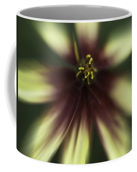 Flower Coffee Mug featuring the photograph Coreopsis Route 66 by Fran Gallogly