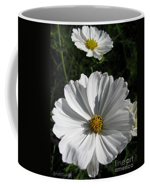 Cosmos Coffee Mug featuring the photograph Cosmos Named Sensation Alba by J McCombie