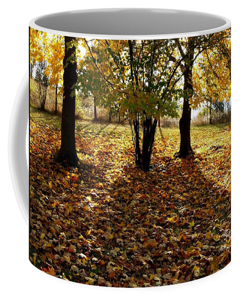 Autumn Coffee Mug featuring the photograph Country Color 11 by Will Borden