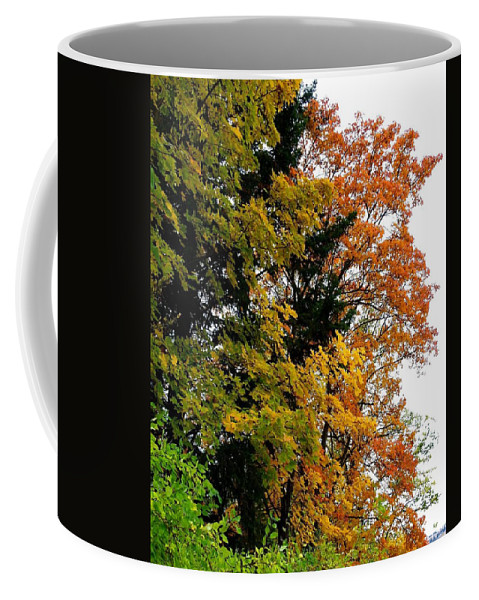 Autumn Coffee Mug featuring the photograph Country Color 2 by Will Borden