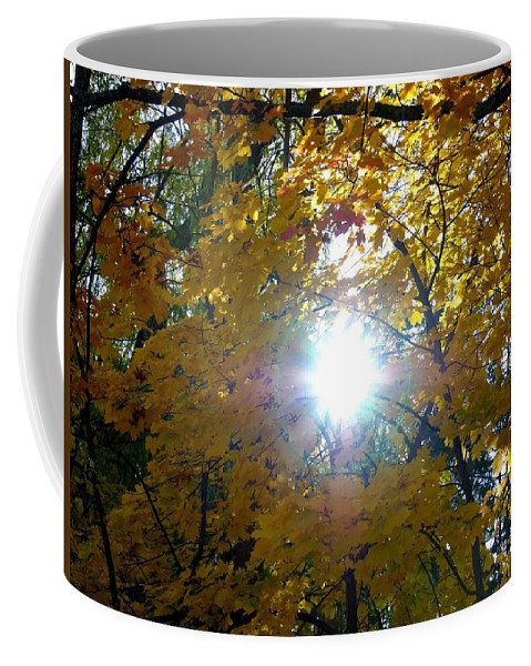 Autumn Coffee Mug featuring the photograph Country Color 3 by Will Borden