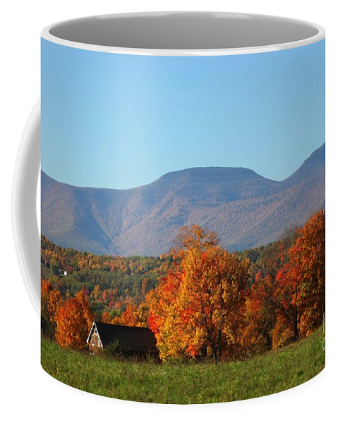 Fall Coffee Mug featuring the photograph Coxsackie New York State by Mark Gilman