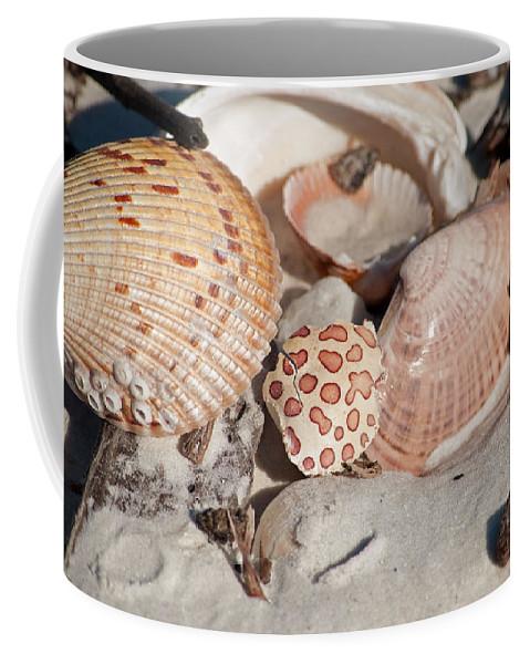Shells Coffee Mug featuring the photograph Crab Shell by Christine Stonebridge