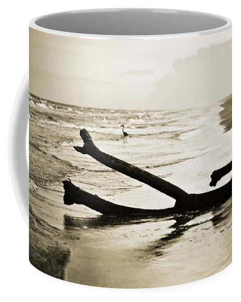Corpus Christi Coffee Mug featuring the photograph Crane At Sunset by Marilyn Hunt