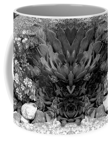Coffee Mug featuring the photograph Creation 288 by Mike Nellums