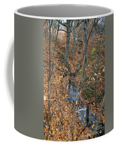 Outdoors Coffee Mug featuring the photograph Creek by Susan Herber