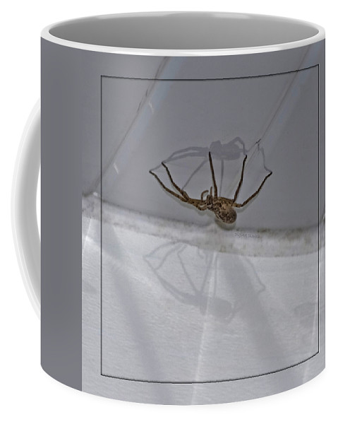 Spider Coffee Mug featuring the photograph Creepy Shadows by DigiArt Diaries by Vicky B Fuller