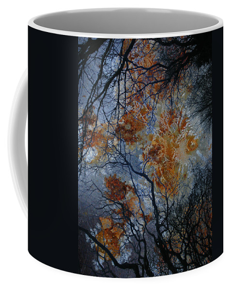 Branches Coffee Mug featuring the photograph Crusted Criticism by The Artist Project