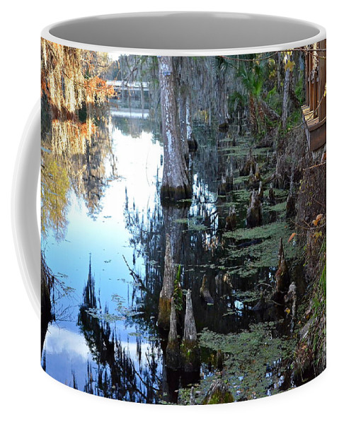 River Coffee Mug featuring the photograph Cypress Knees And Trees by Carol Bradley