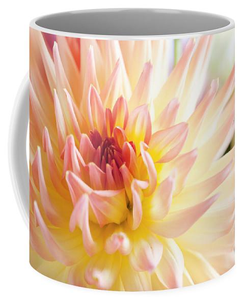 Dahlia Coffee Mug featuring the photograph Dahlia Flower 01 by Nailia Schwarz