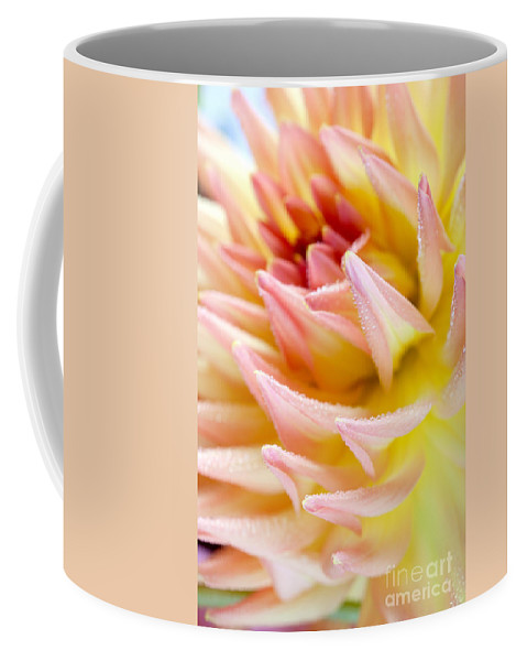 Dahlia Coffee Mug featuring the photograph Dahlia Flower 13 by Nailia Schwarz
