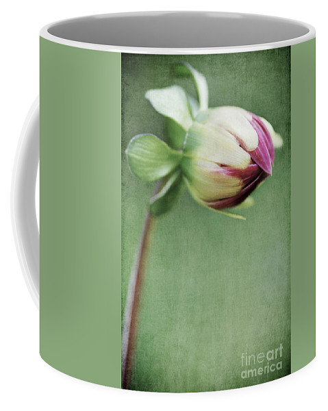 Flower Coffee Mug featuring the photograph Dahlia Flower 2 by Neil Overy